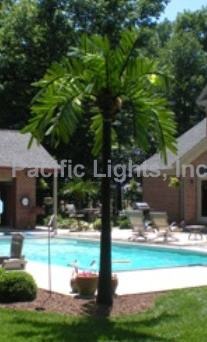 Natural LED Lighted Palm Tree | Products | Pacific Lights Inc.