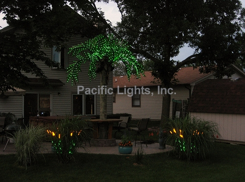 Natural LED Wheat Grass   Products   Pacific Lights Inc.