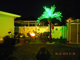 Pacific Lights Inc LED Lighted Palm Trees  BUY FACTORY DIRECT